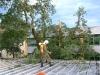 20070622_technischer_einsatz_sturmschaden_001