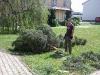 20100430_Maibaumaktion_053